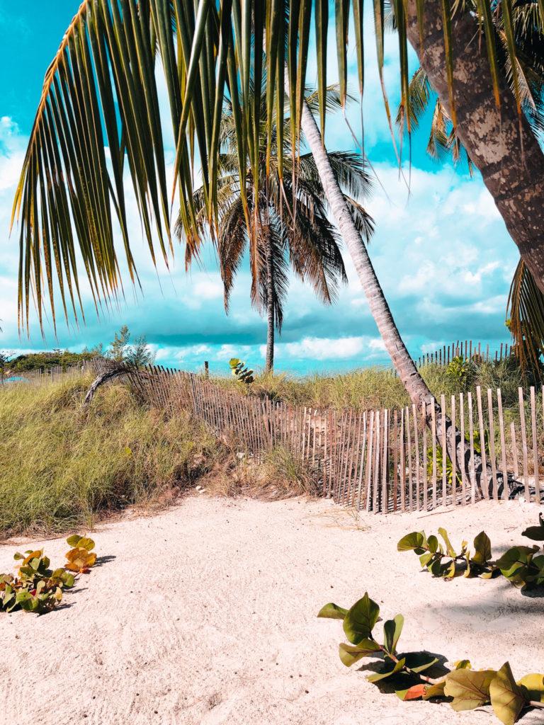Beach  Karibikkreuzfahrt