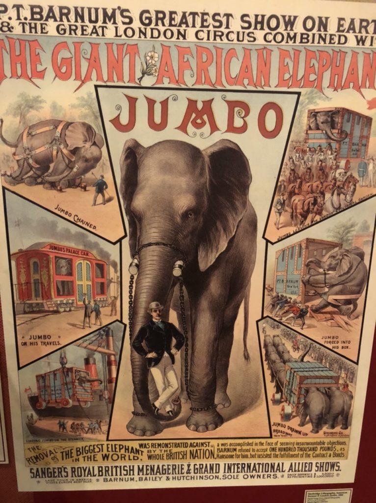 Zirkus Sarasota